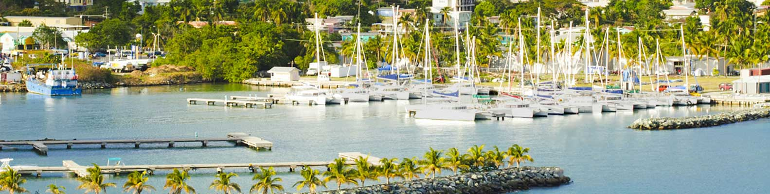 Marina, the starting point of sailing holidays in the Caribbean